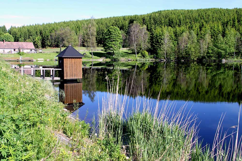Bärnkopf Stimmung Teich