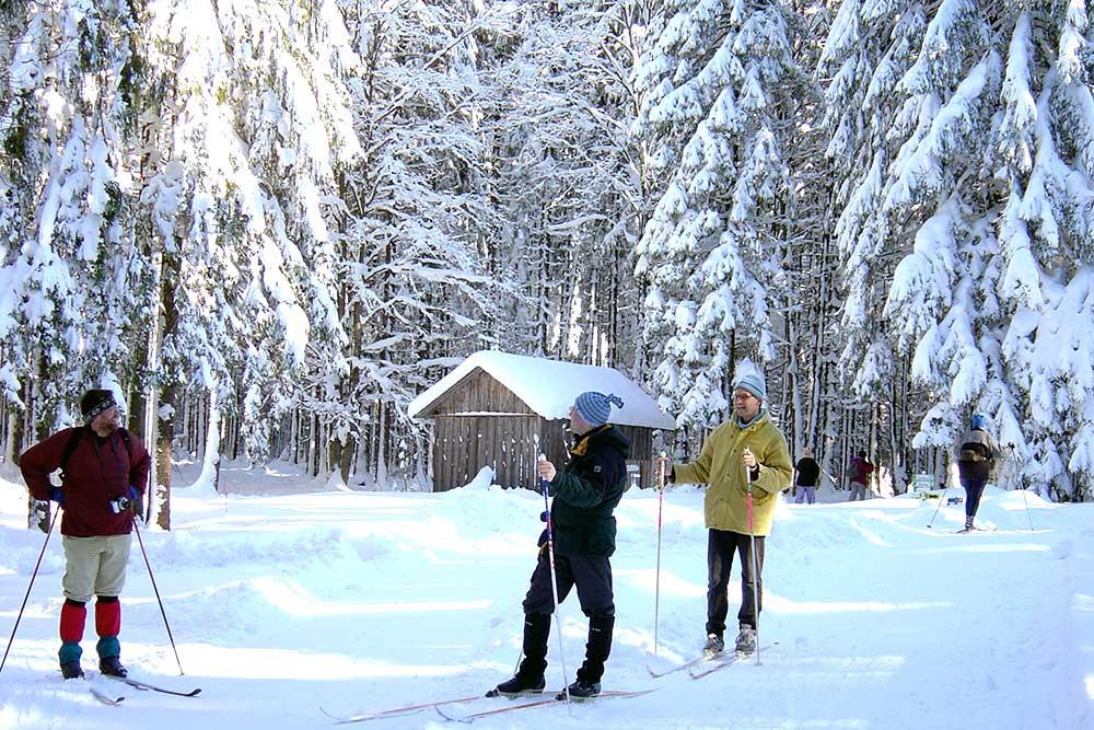 Langlaufen in Bärnkopf, Haus Linda